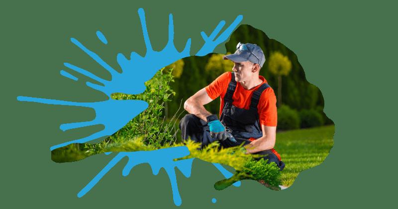 Landscaping Website Design, SEO, Digital Marketing