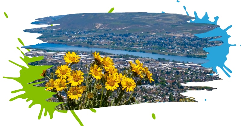 Wenatchee WA Website Design, SEO, Digital Marketing